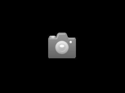 Pulsara Zaunband weiss