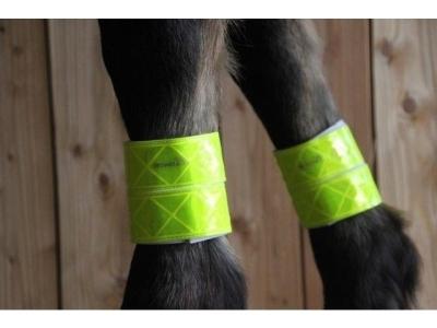 Pferde-Leuchtgamaschen gelb Pferde-Leuchtgamasche 5x20cm