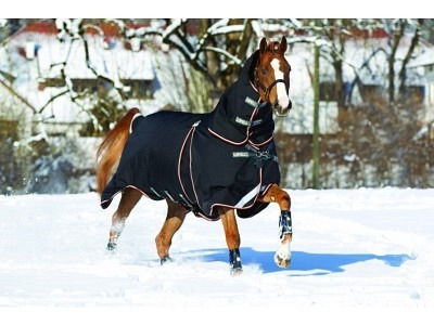 HORSEWARE Rambo Optimo Turnout outer only Aussendecke