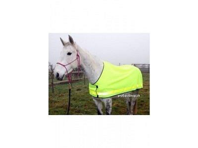 Leuchtdecke Hand-Pferd