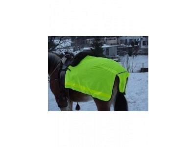 Leuchtnierendecke Pferd